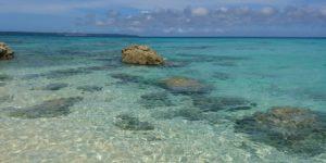 Shanti 癒やしの海