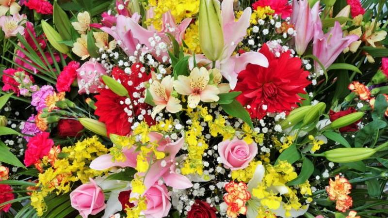 それぞれ、どの花も美しい