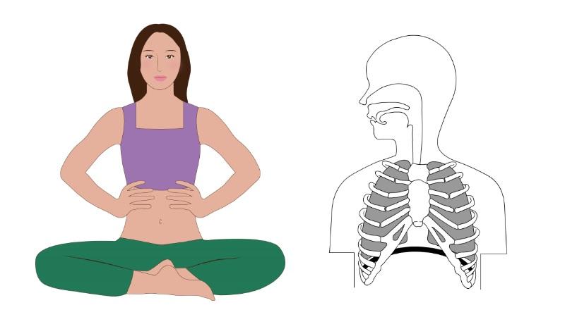 胸や肋骨のあたりに呼吸を入れるイメージ